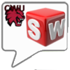 New CSWAs from CWU